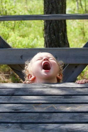 screams-of-joy-2481573_1280
