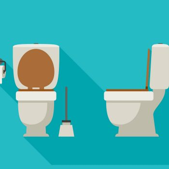 Toilet flat illustration front and side views, with toilet paper and brush.